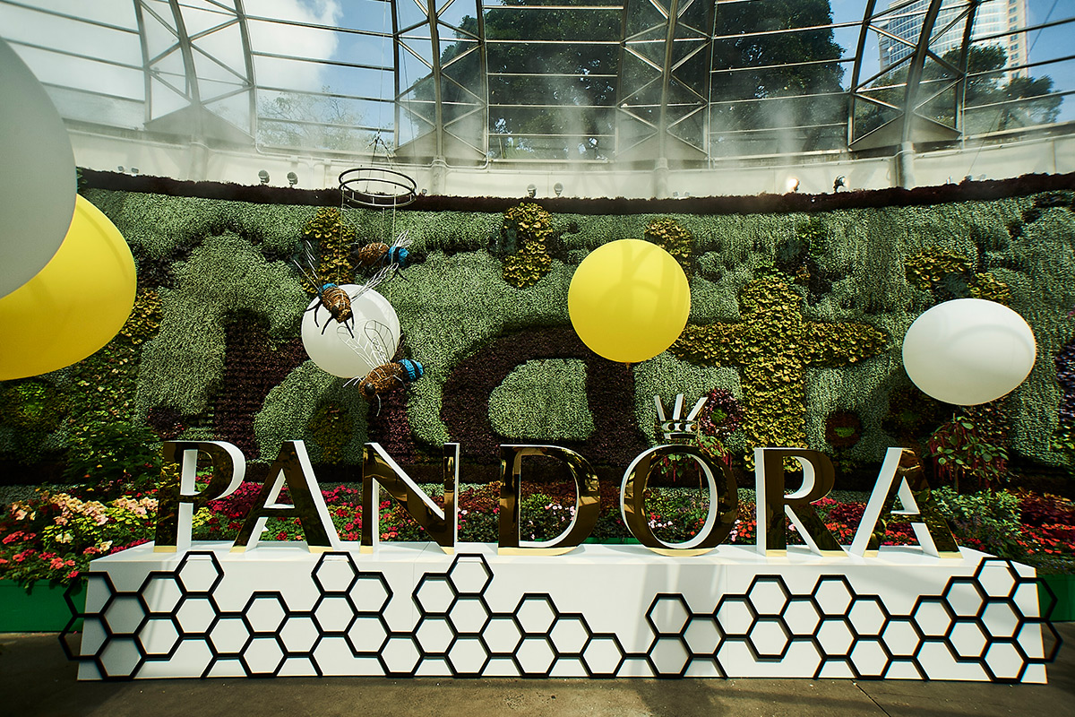 pandorawide